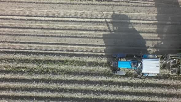 Thumbnail for Potato Harvesting Machine on the Farmland, Aerial