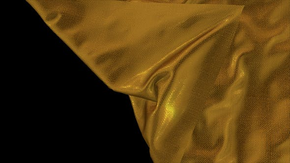 Cover Image for Gold Cloth Reveal 4