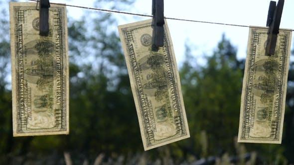 Thumbnail for Drying Dollar Banknotes