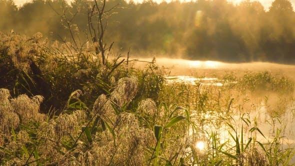 Thumbnail for A Beautiful Sunrise On The Lake.