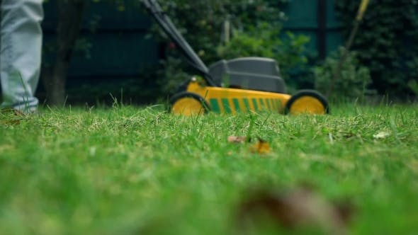 Thumbnail for Grass And Man With Lawnmower