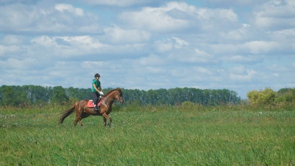 Thumbnail for Beautiful Girl Riding a Horse In Countryside. Trot