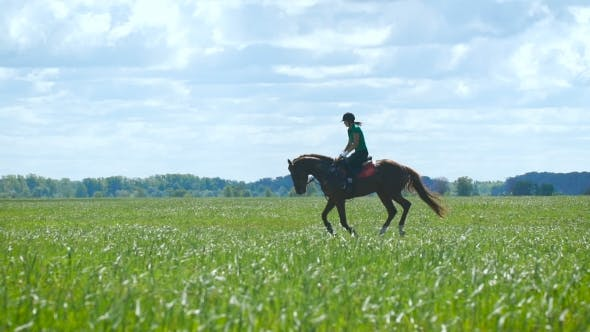 Thumbnail for Beautiful Girl Riding a Horse In Countryside. Gallop