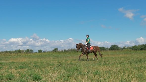 Thumbnail for Beautiful Girl Riding a Horse In Countryside. Trotting Though The Field