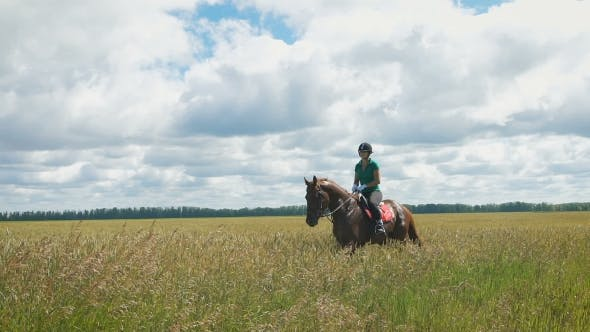 Thumbnail for Beautiful Girl Riding a Horse In Countryside. A Beautiful Horse Coming