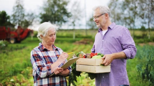 Thumbnail for Senior Couple With Box Of Vegetables On Farm