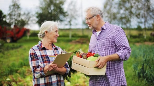 Cover Image for Senior Couple With Box Of Vegetables On Farm