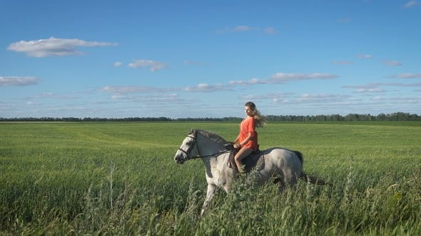 Thumbnail for Beautiful Blonde Girl In The Red Shirt Riding a Horse At Countryside