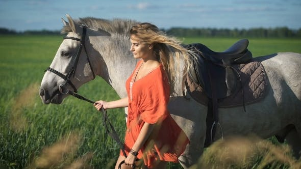 Thumbnail for A Beautiful Charming Blonde Woman Walking With a Horse At a Field