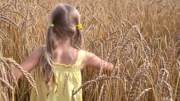 Thumbnail for Cute Girl In Wheat Field