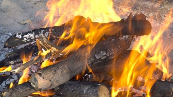 Thumbnail for Burning Wood In The Fire