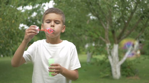 Thumbnail for The Boy Blows a Bubbles In The Garden