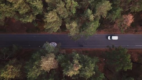 The Drone Takes Off Over a Forest Road with a Bicycle Path with a Speed Limit of 20 Km. White Van