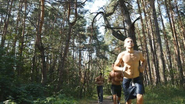 Thumbnail for Group Of Young Muscular Athletes Running At The Forest Path