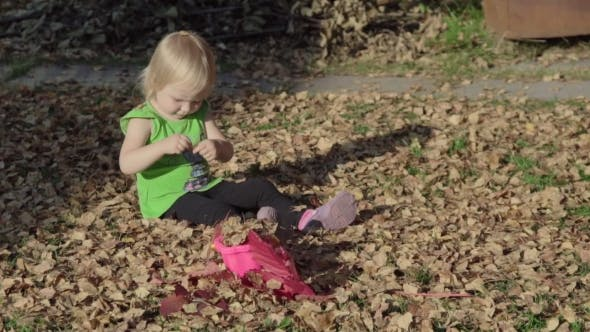 Cover Image for Cute Baby Girl Playing With Leaves In Autumn