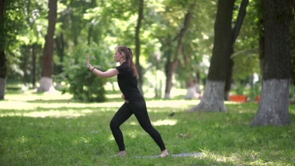 Thumbnail for The Girl Doing Exercises In The Park.