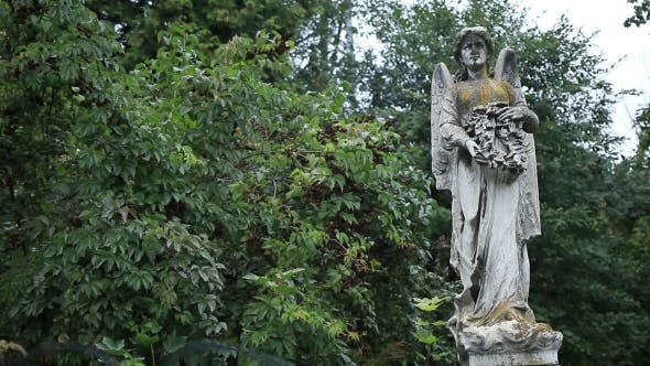 Cover Image for Beautiful Statue Of Angel At The Old Cemetery