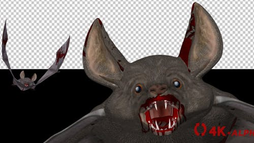 Vampire Bat in Blood - Flying Loop - Front Angle - 4K