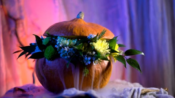 Thumbnail for Flower Arrangement On The Basis Of The Pumpkin.