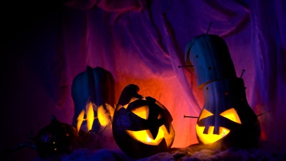 Thumbnail for Funny Pumpkin Head The Company During The Night Halloween. Sinister Composition But Lovely Holiday
