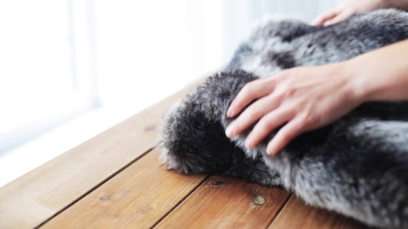 Thumbnail for Woman Folding Faux Fur Jacket On Table At Home