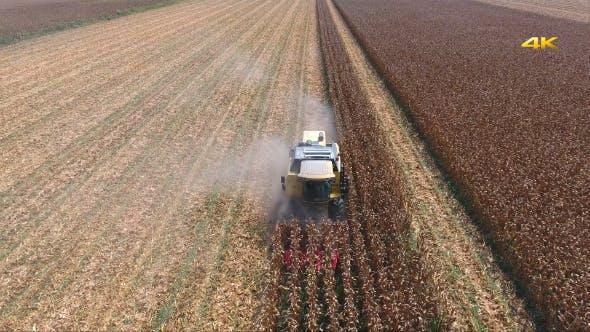 Thumbnail for Combine Harvesting