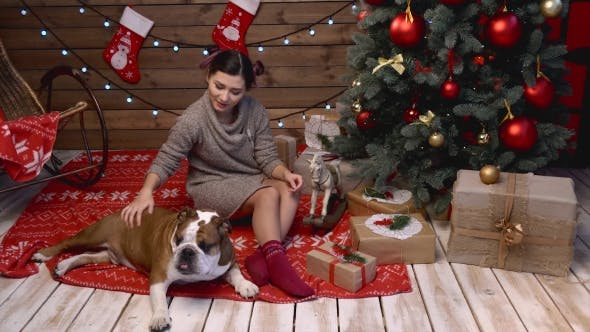 Thumbnail for A Girl With Bulldog Under Fir-tree