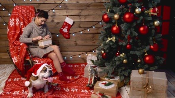 Thumbnail for frau und ihr hund bei weihnachten
