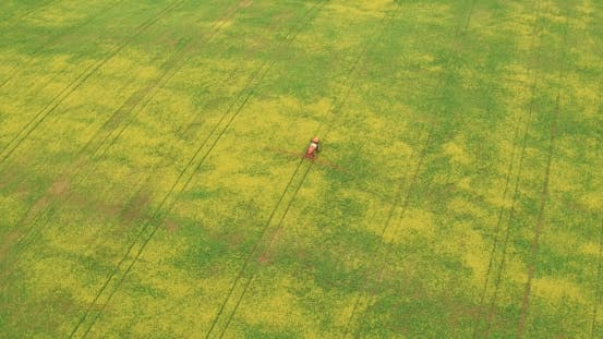 Thumbnail for Aerial View Of Tractor Spraying Canola Field
