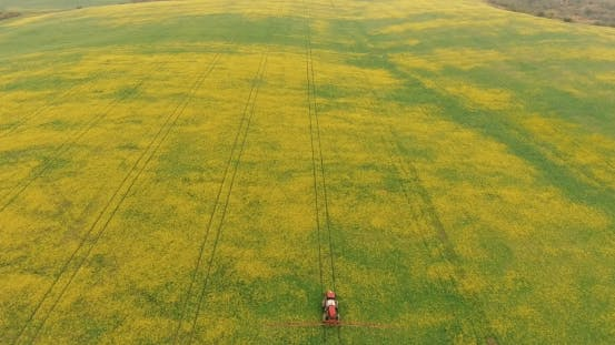 Thumbnail for Aerial Tractor Equipment Fertilize Spray Agriculture Canola Crop Plant Field Near Forest