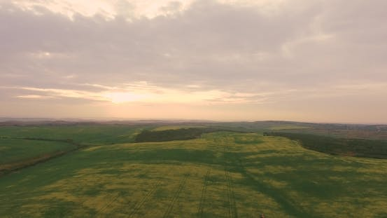 Thumbnail for Tractor Equipment Fertilize Spray Agriculture Canola Crop Plant Field Near Forest in Sunset