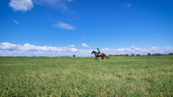 Thumbnail for Young Woman Riding a Horse On The Green Field