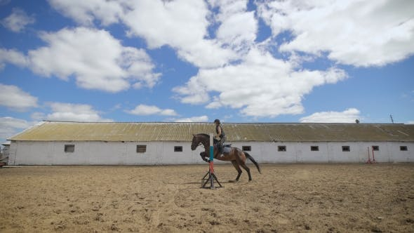Thumbnail for Young Girl Riding a Horse