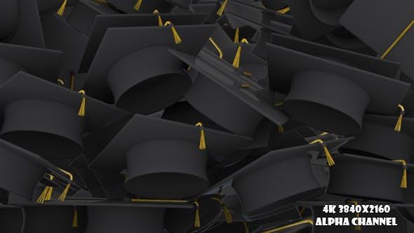 Thumbnail for Graduation Caps Transition