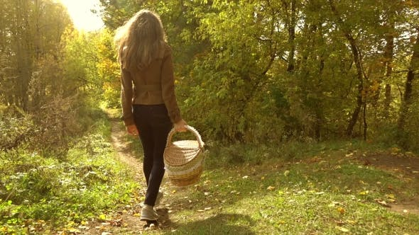 Thumbnail for A Young Brunette Woman Walking Through Autumn Woods, Holding a Picnic Basket. Sunny Day.