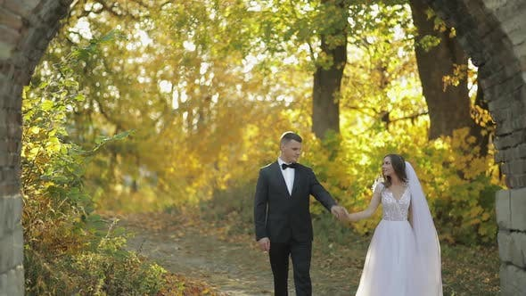 Thumbnail for Wedding Couple. Lovely Groom and Bride. Happy Family. Man and Woman in Love