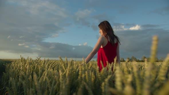 A Woman in a Red Dress Walks Across a Field of Ears