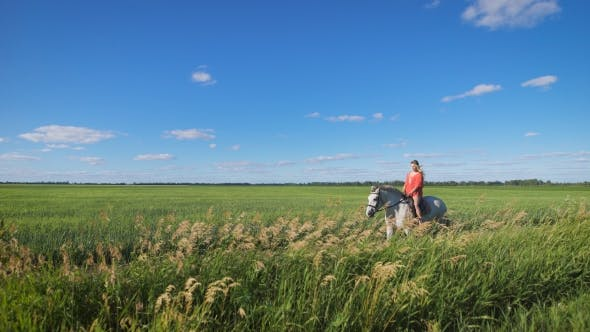 Thumbnail for Beautiful Blonde Girl Riding a Horse At a Countryside