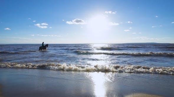 Thumbnail for Beautiful Woman Riding a Horse At a Lake