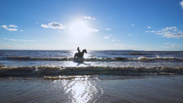 Thumbnail for A Beautiful Woman Riding a Horse At a Lake