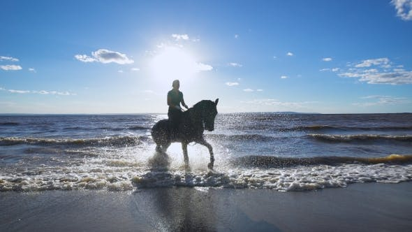 Thumbnail for A Beautiful Woman Riding a Horse at a Lake