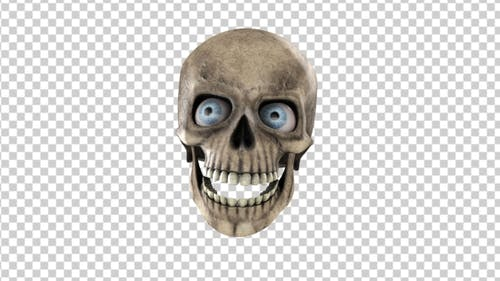 Animated Skull With Eyes