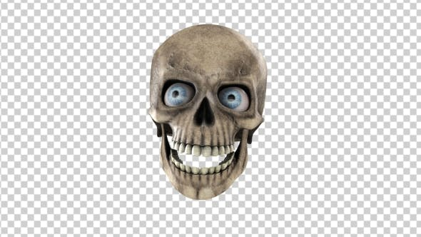 Thumbnail for Animated Skull With Eyes