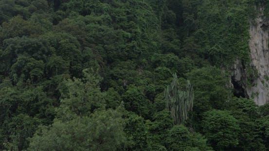 Thumbnail for Seen Green Mountains And Statue Of Murugan At Batu Caves