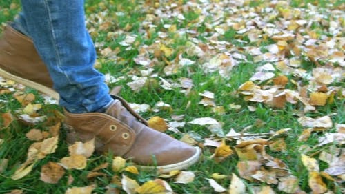 Walking In Autumnal Foliage