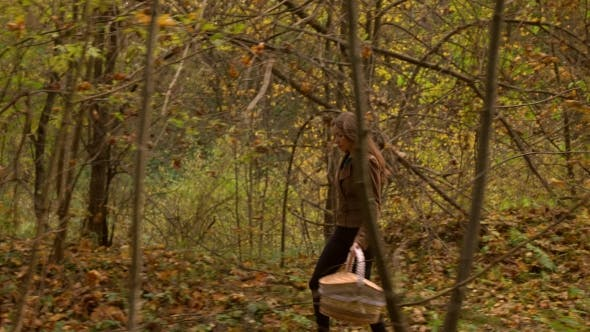 Thumbnail for Beautiful Slender Girl Walking In Autumn Forest Holding a Picnic Basket. Profile View  Steadicam