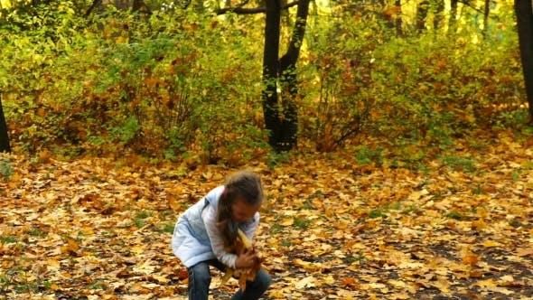 Thumbnail for Girl Throws Up Autumn Leaves in the Park