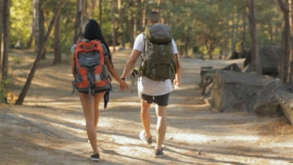 Paar von Wanderer setzt die Walking bei der Wald