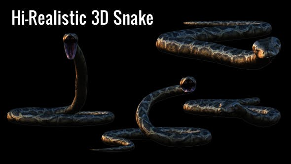 Thumbnail for Realistic 3D Snake Animations Pack