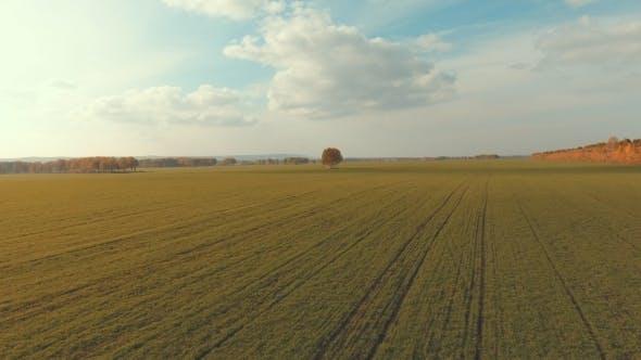 Entfernen Sie Feld mit Furchen von Landmaschinen